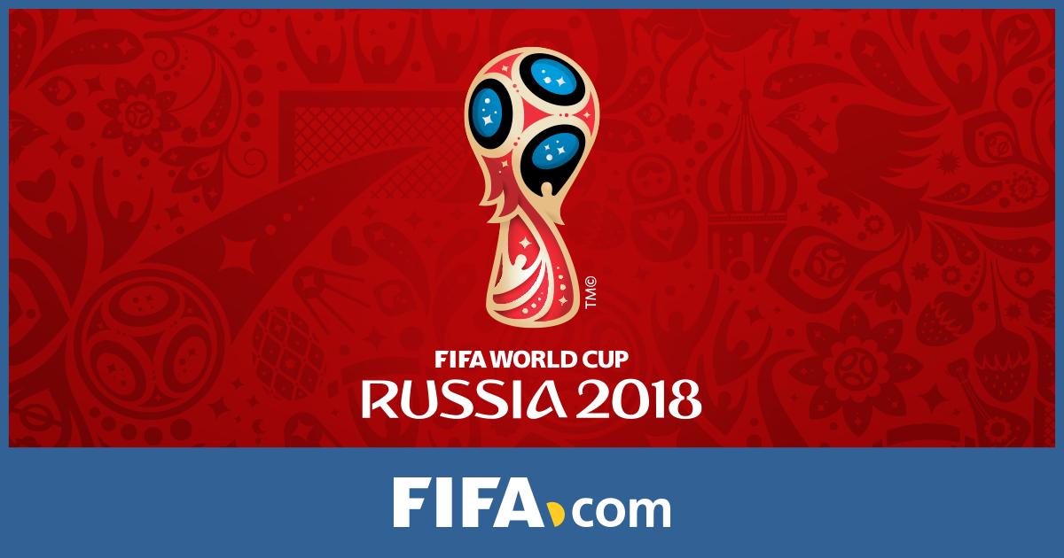 voluntario FIFA 2018