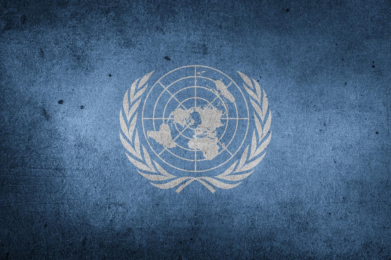 Pasantía en la ONU México