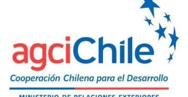curso sísmico en chile
