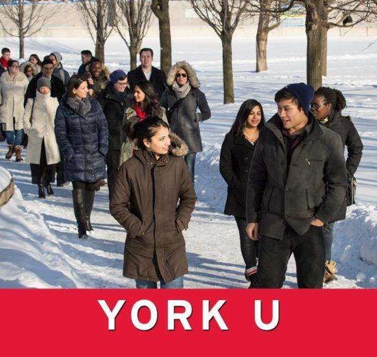 becas para estudiar en canada york